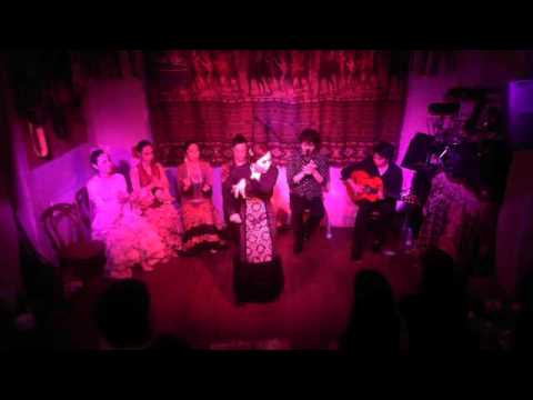 2016-04-16 Flamenco Night Special Vol.6 01