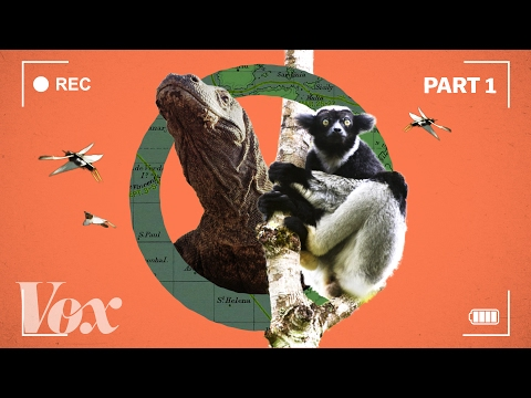 Thumbnail: How the BBC makes Planet Earth look like a Hollywood movie