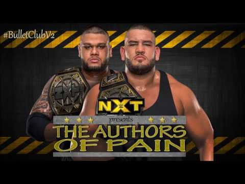 NXT : Author Of Pain Theme Song - Pain [2017] | NXT Tag Team Champions