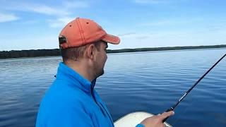 озеро Нарочь, Республика Беларусь , июнь 2017, Graphiteleader Finezza - часть 1
