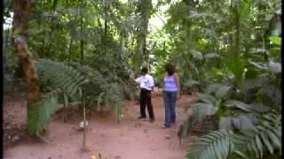 Takalik Abaj-Retalhuleu, Guatemala (1 of 2)