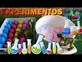 45 Minutos Nuevos Experimentos Caseros para NIños con Huevos de Dinosaurios en Español