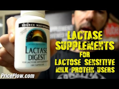 Lactase Supplements for Lactose Intolerant Whey Protein Users