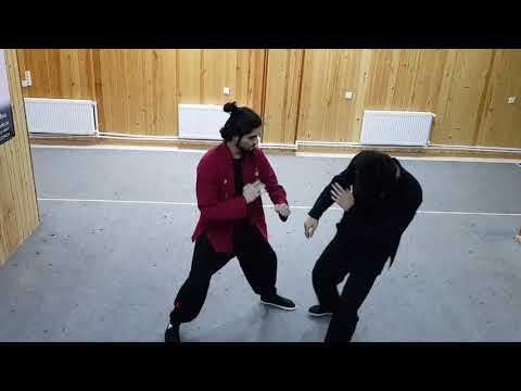 Wing Chun ⛩ Techniques Show