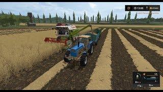 Rosyjski PGR #2 Żniwa pszenicy na 2 kombajny