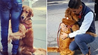 When He Takes His Dog Out For A Walk, She Stops And Wraps Her Paws Around Strangers' Knees!