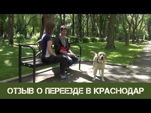 История студента, который переехал в Краснодар. Стоит ли переезжать в Краснодар?