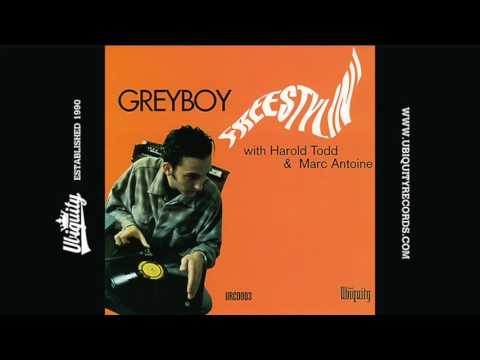 Greyboy: Panacea