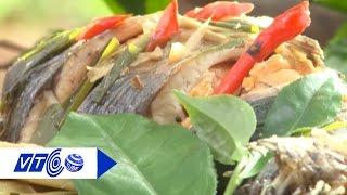 Tinh tế và sành miệng với 'Cá kho chè xanh' | VTC