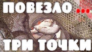 Повезло. Три места лова, и все удачно. Рыбалка в Эстонии на реке Казари
