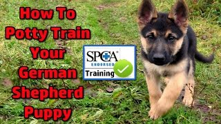 German Shepherd Puppy - How To Potty Train ►START TODAY◄ German Shepherd Potty Training Tips :)