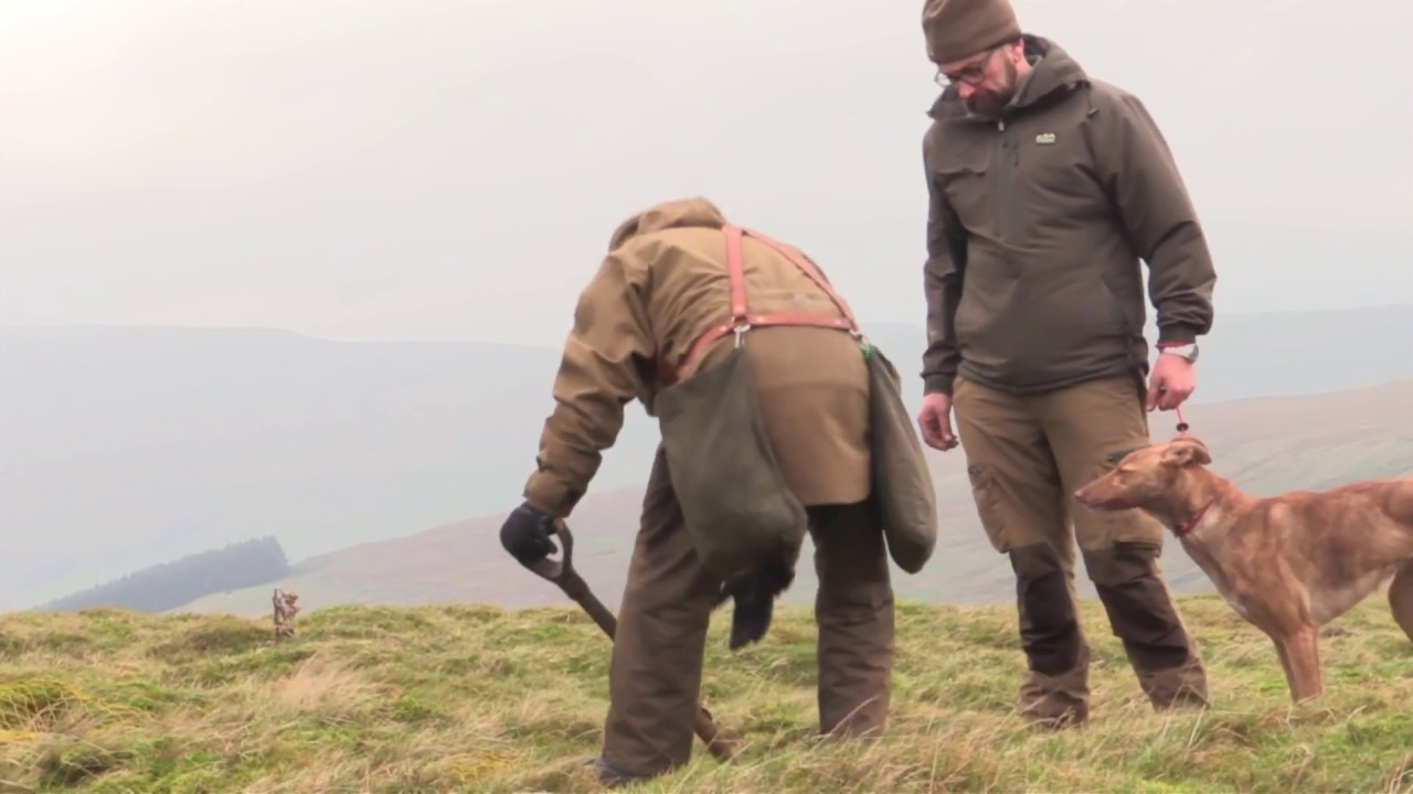 Download Ferreting on the Yorkshire hills part 2