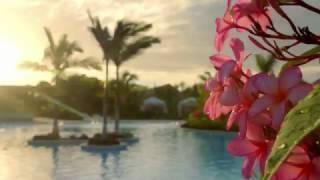 Karibik Kreuzfahrt zur traumhaften Insel Harvest Caye