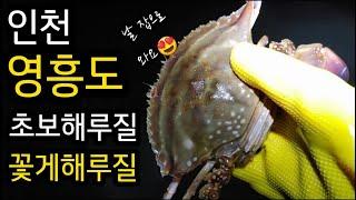 인천영흥도 꽃게해루질 왕초보해루질 줍줍 스타트~