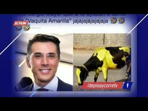El Gallo Por La Mañana - Niño se sorprende del error de Sergio Mayer de la vaquita amarilla