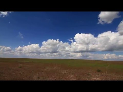Travel in Kazakhstan. Spring. Nature. Steppe