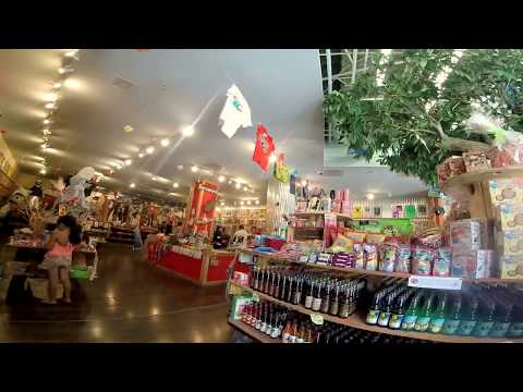 Rocket Fizz Soda Shop Salt Lake City Utah