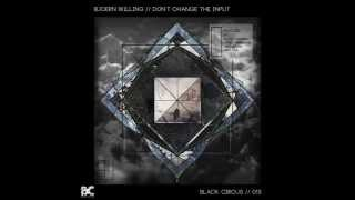 Bjoern Willing - The Change (Mike Maass & Matt Mus Remix)[Black Circus]