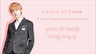 Gambar cover EXO-M - Don't Go (蝴蝶少女) (Color Coded Chinese/PinYin/Eng Lyrics)