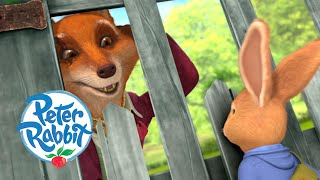 #Autumn Peter Rabbit - Greatest Escapes   Cartoons for Kids