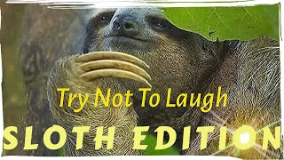 Try Not To Laugh Or Grin SLOTH EDITION