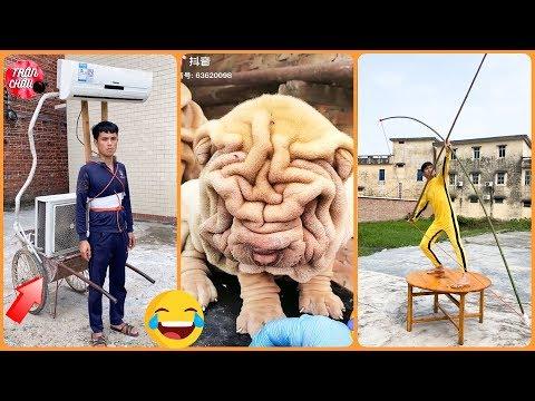💯Tik Tok Trung Quốc😂Những Khoảnh Khắc Hài Hước Thú Vị Bá Đạo trên Tik Tok Trung Quốc Triệu View#22