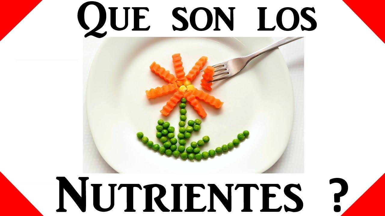 Que son los nutrientes salud y nutricion youtube for Cuales son los arboles perennes