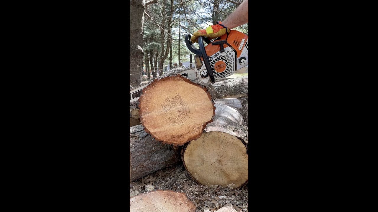 Stihl 500i Ripping Through Firewood #Shorts