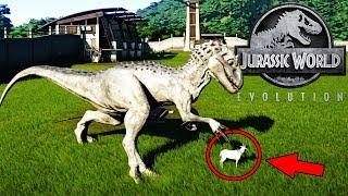 INDOMINUS REX PRIMER DINOSAURIO HIBRIDO! JURASSIC WORLD EVOLUTION