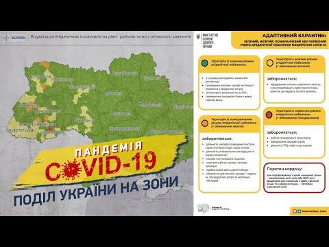 Пандемія COVID-19: поділ