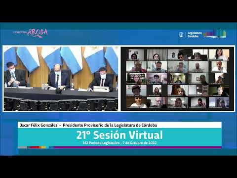 Vigésima Primera Sesión Virtual - 142 Período Legislativo