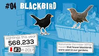 Big Garden Birdwatch Results 2018