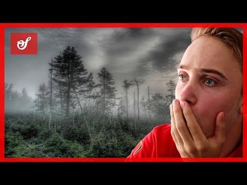 DE MEEST BIZARRE GEBEURTENISSEN OOIT! | Eekweek #1