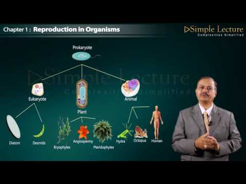 Biology Class 12 Chapter 1 Reproduction in Organism thumbnail