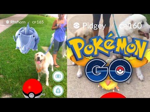Pokemon GO Dog Walk! (Super Cooper Sunday #66)