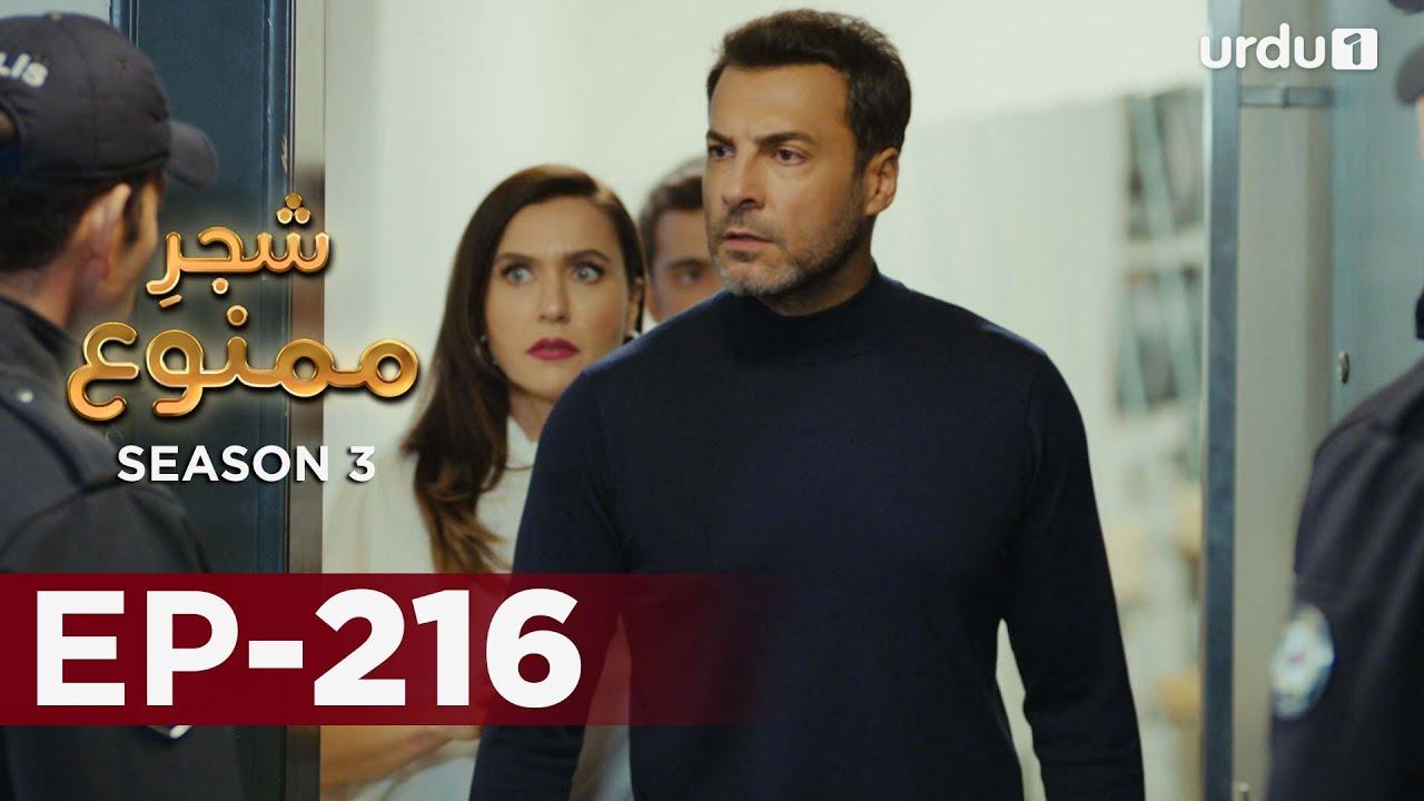 Download Shajar-e-Mamnu   Episode 216   Turkish Drama    Forbidden Fruit   Urdu Dubbing   7 October 2021
