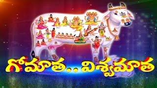 Uses of Go Pooja Worship - Gomatha...Vishwa Matha Special Program_Part 3