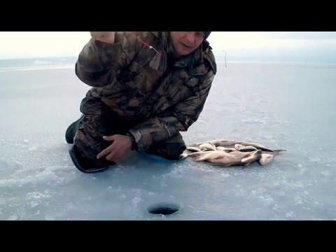 зимняя ловля плотвы и леща на водохранилищах