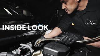 Lexus Reflections