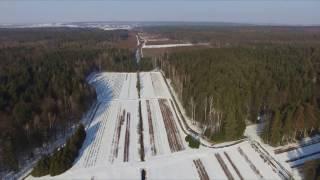 Leśnictwo szkółkarskie w zimowej odsłonie