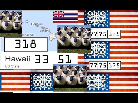 Hawaii 50 Star Sheep Flag Dream State