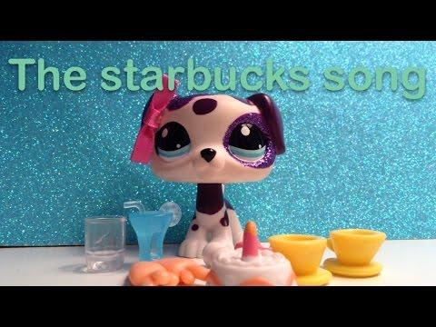 Starbucks vs starbarks