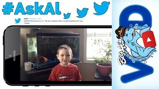 #AskAl: Fish Names; Underwater Breathing; What Do Guppies Eat?