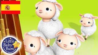 Canciones Infantiles | Hickory Dickory Dock | Dibujos Animados | Little Baby Bum en Español