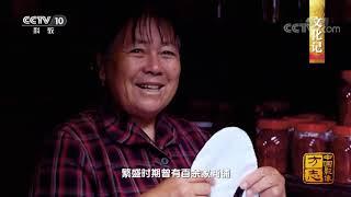 《中国影像方志》 第402集 云南弥渡篇| CCTV科教