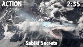 Sabiki Secrets