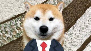 面接会場にきちんとノックして入室する柴犬就活生
