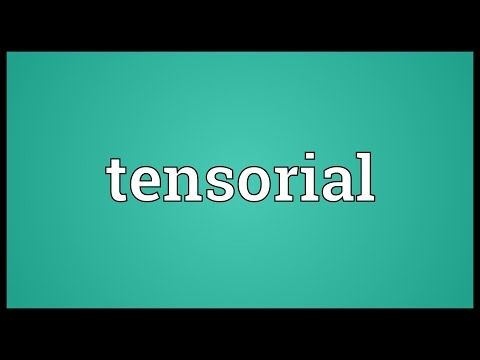 Header of tensorial