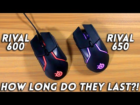 SteelSeries Rival 600/650 Durability and Long Term Review!