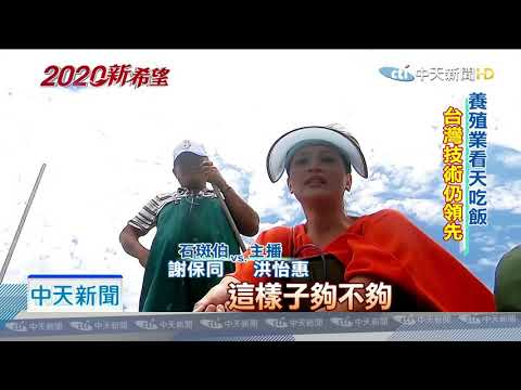 20190716中天新聞 拚搶訂單超有感 石斑伯挺韓拚經濟